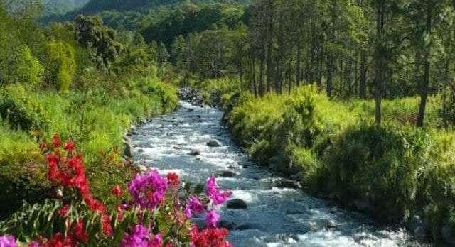 Top Reasons to Retire In Boquete Panama